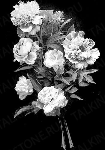Гравировка цветов на памятник GG8712