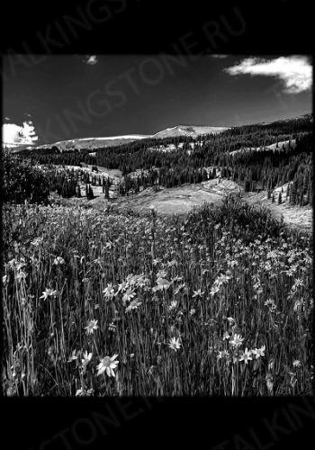 Гравировка Пейзаж GG8142